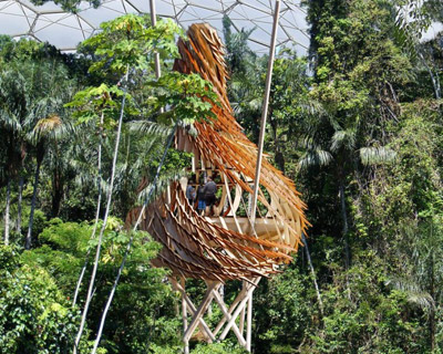 biodiversity nest education treehouse by blueforest