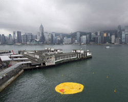 florentijn hofman's giant rubber duck: the aftermath